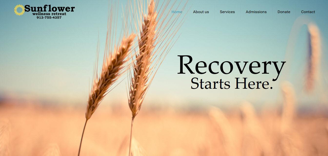 Website Portfolio Kansas City Web Design Examples