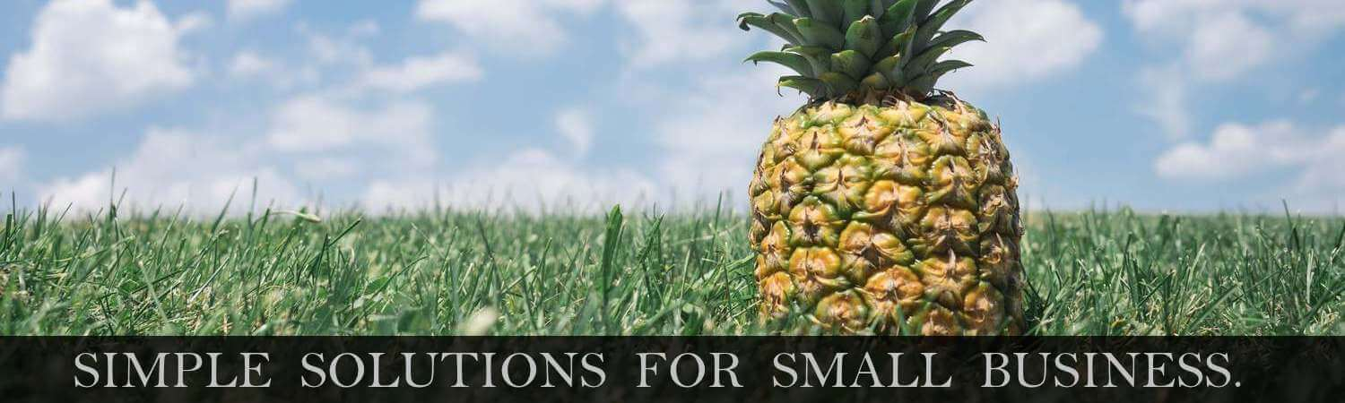 Simple Solutions For Small Business