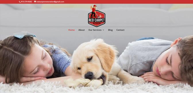 divi website example